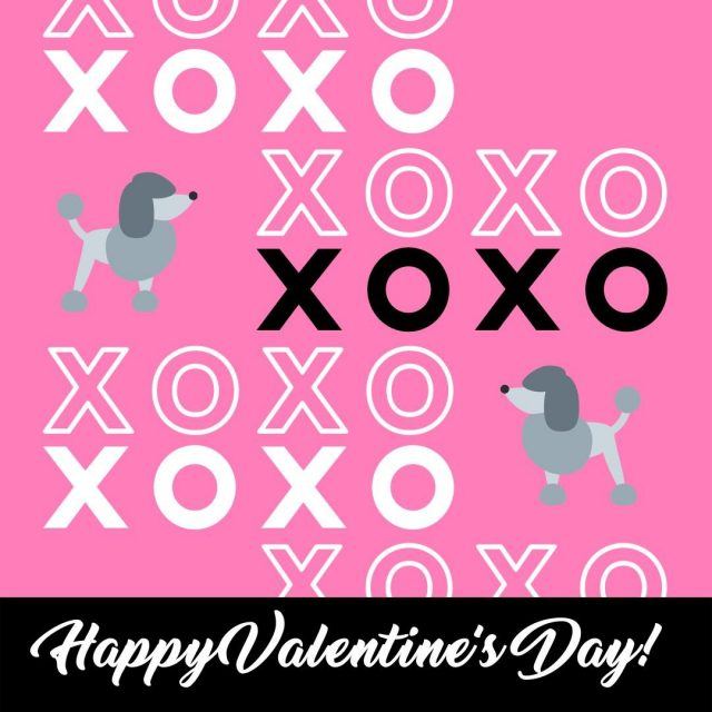 We hope your day is full of love and laughter!  Love & Poodles, The Pearl Poodle Team